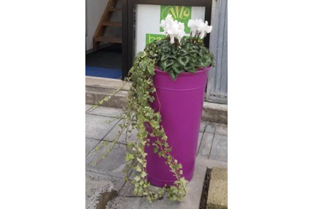 eurotank prodotti beegreen fiori e piante